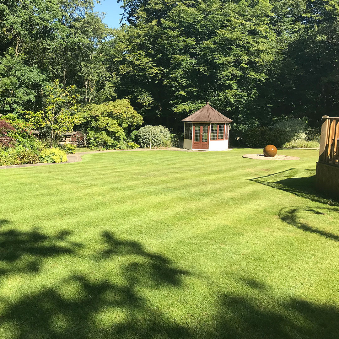 Fresh mown grass with trees